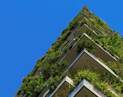 ESG Trends in Alternatives